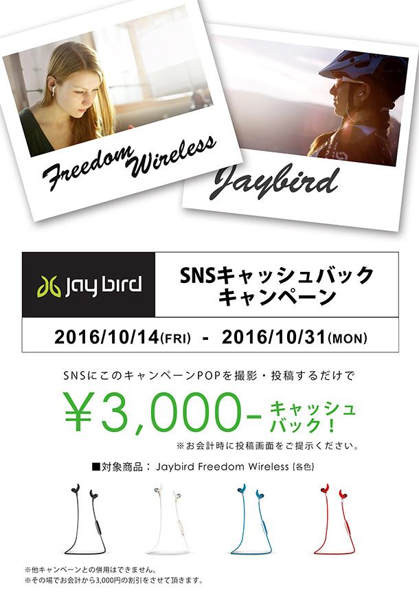 jaybird_sns_blog