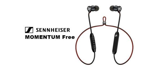 MOMENTUM_Free