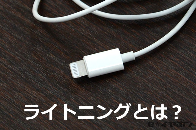 apple EarPods with Lightning Connector プラグ部分
